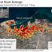 Beirut Disaster